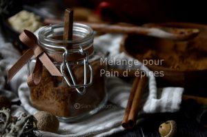 mélange-quatre-épices-pain-d-epices