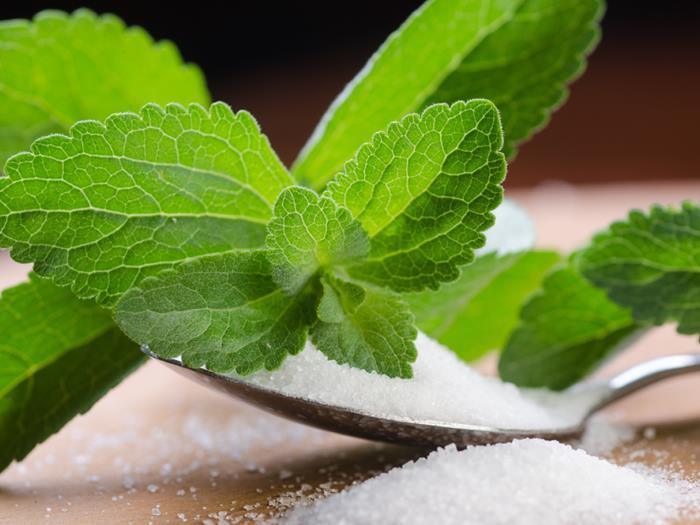 stevia en feuille et poudre
