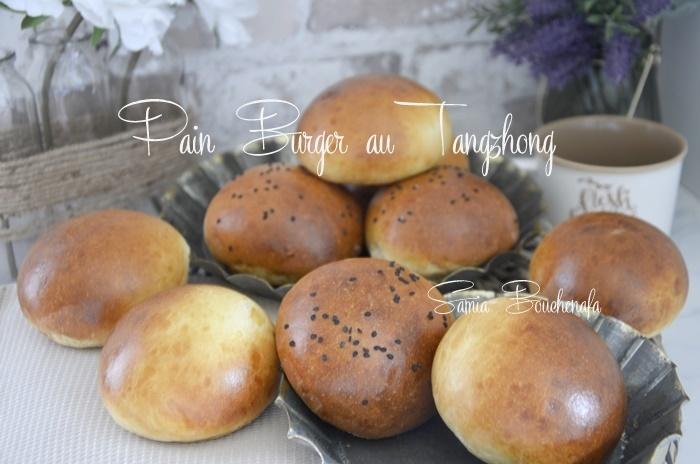 pains-burger-tangzhong